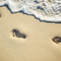 Executopia-footprints